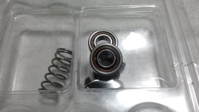 Caged Ceramic Bearings.jpg